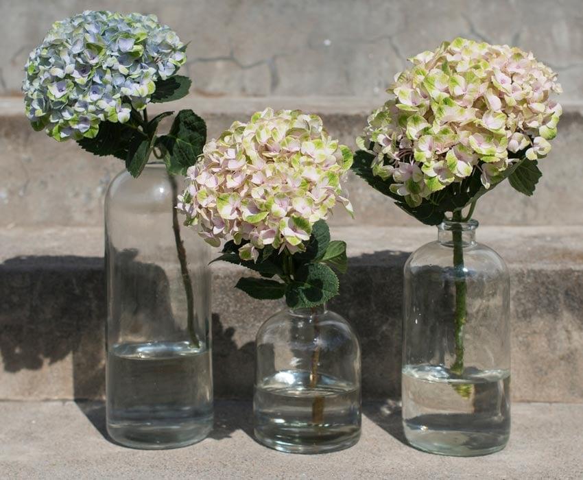 hortensia-gronn-blaa-vase-glass.jpg