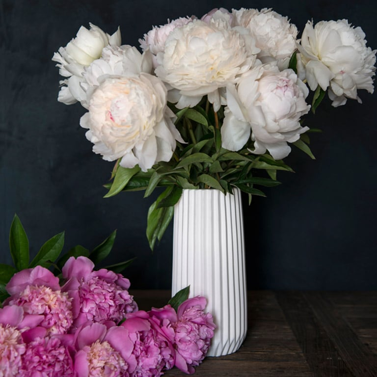 floriss-peoner-i-vase.jpg