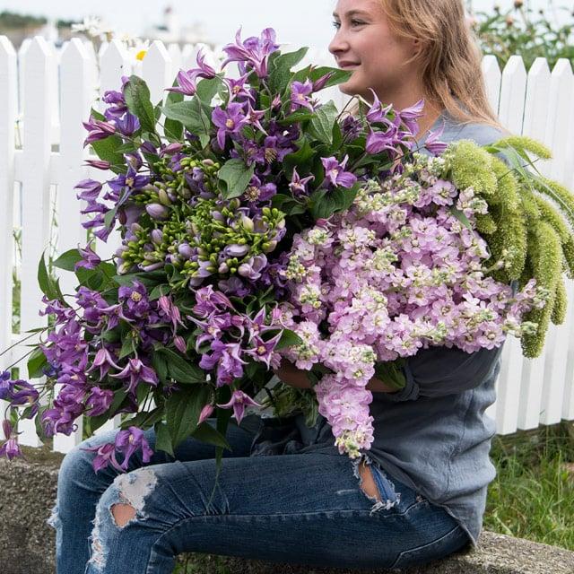 floriss-sommerblomster-klematis-levkøyer-vakre-straa.jpg