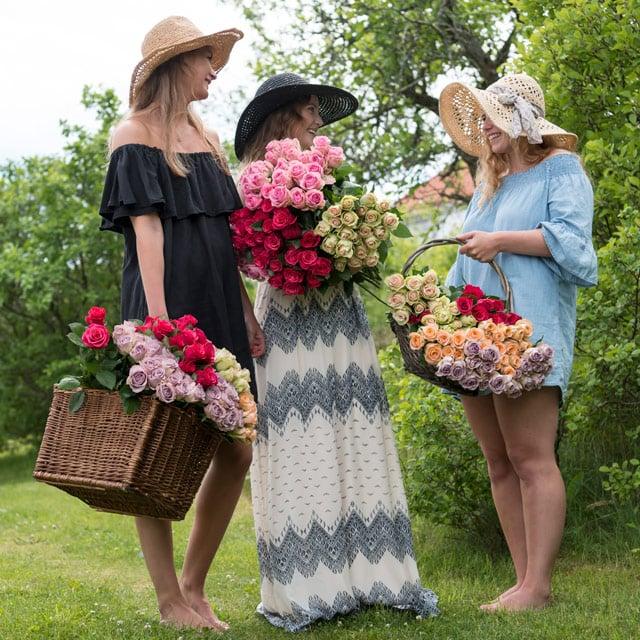 floriss-sommerblomster-favorittroser-festroser.jpg