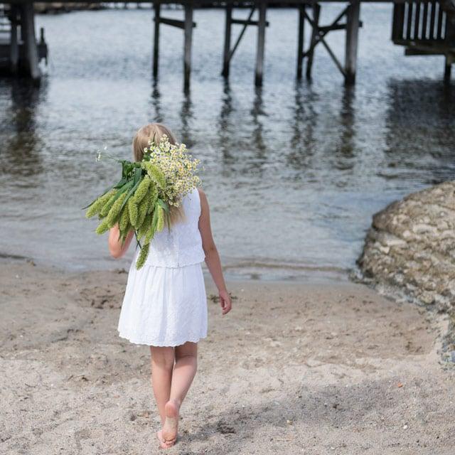 floriss-sommerblomster-tanacetum-solsikker-straa.jpg