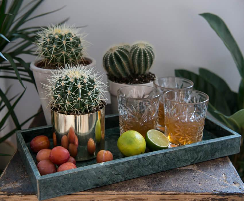 floriss-kaktus-fat-med-frukt-og-glass.jpg