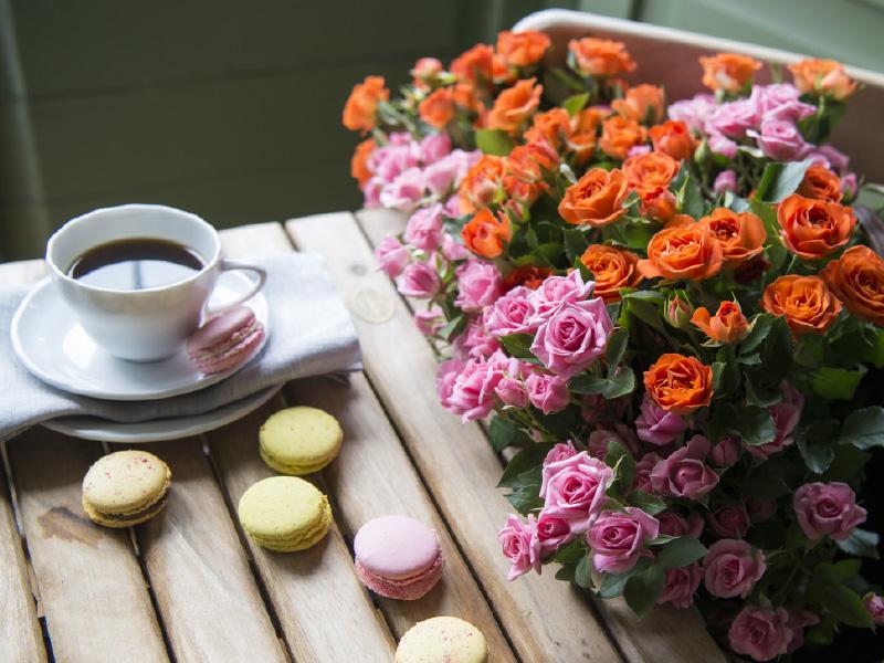 oransje-rosa-roser-pa-bord.jpg