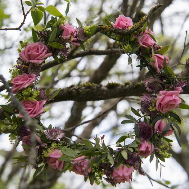 rosa-grenrose-krans.jpg