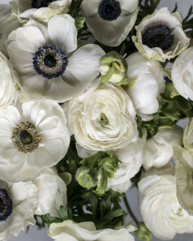Hvite-Anemoner-i-vakker-bukett-med-hvite-ranunkler.jpg