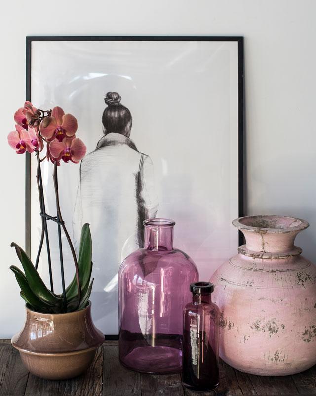 phalaenopsis-orkide-potter-krukker.jpg