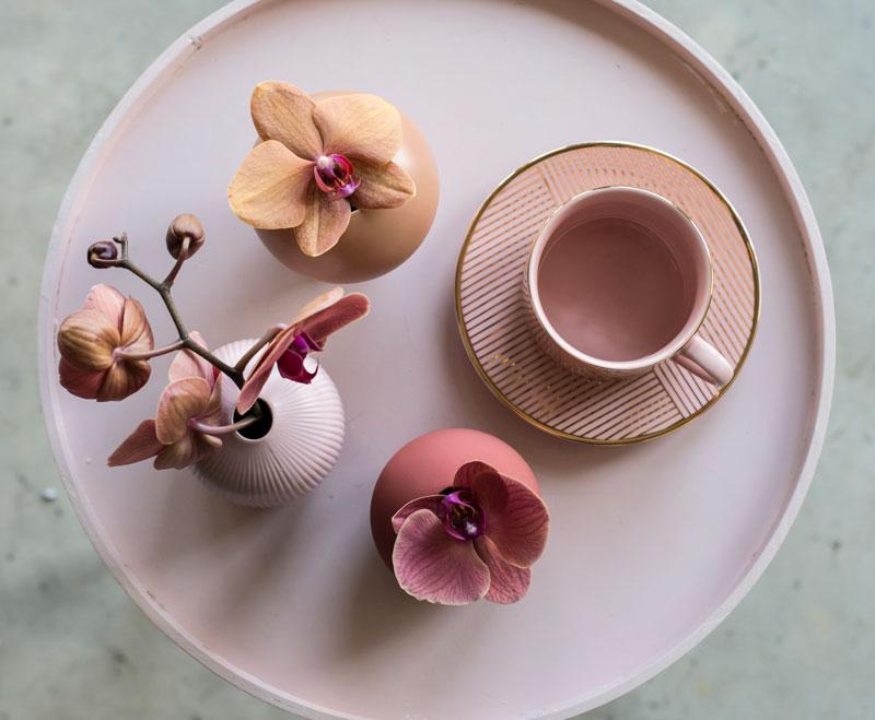 phalaenopsis-orkide-klipping-gren-vase-holdbar-2.jpg