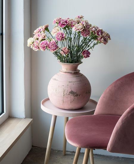 floriss-nellik-store-blomsterhoder.jpg