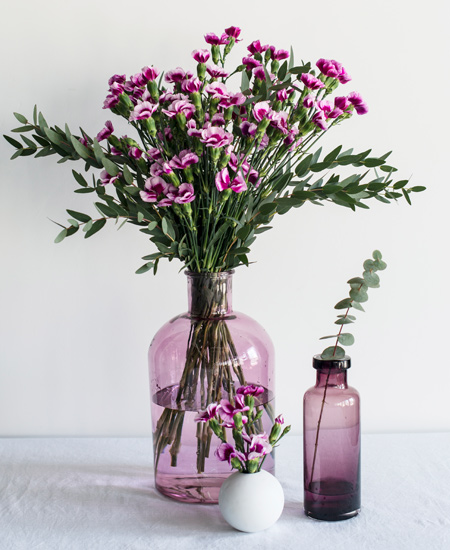 floriss-nellik-i-glassvaser-vaser-smaa-store-1.jpg