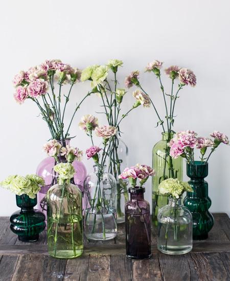 floriss-nellik-i-glassvaser-vaser-smaa-store-3.jpg