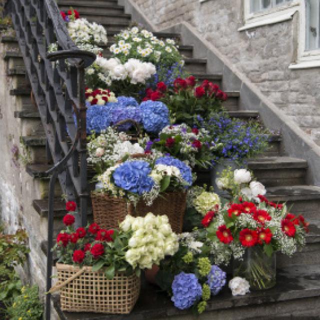 trapp-dekket-med-blomster-i-blatt-rodt-og-hvitt.jpg