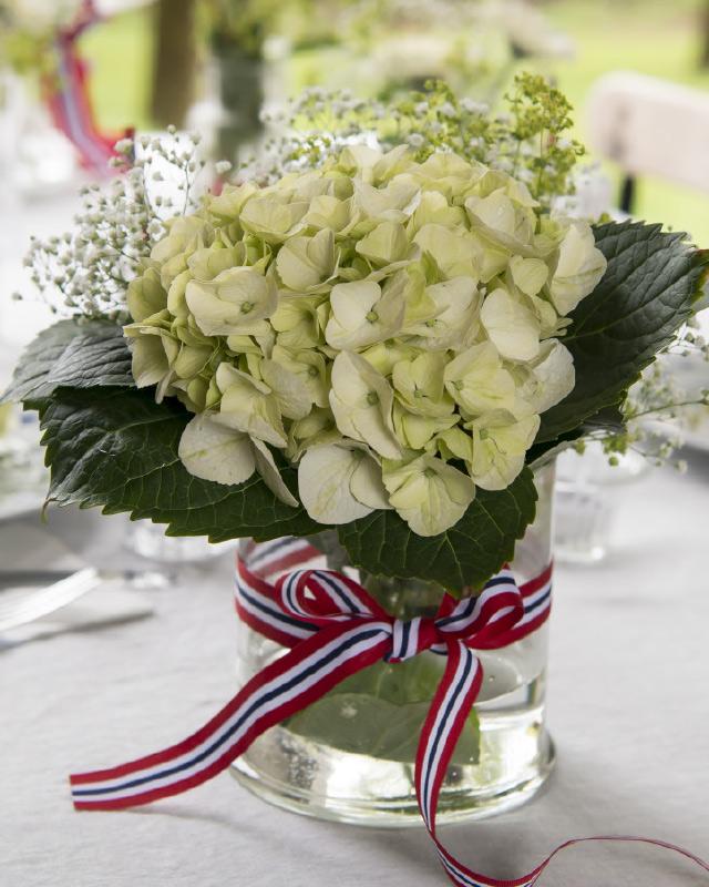 Vakker-hvit-hortensia.jpg