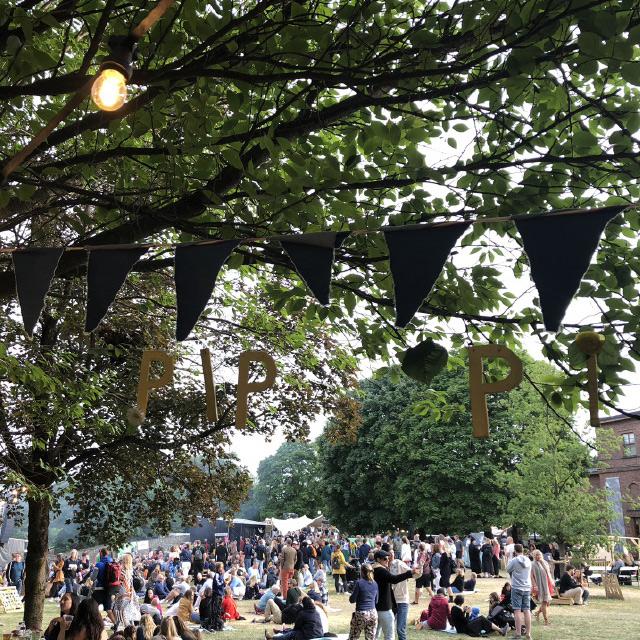 pip-festival-banner.jpg