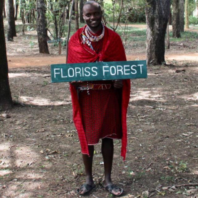 floriss-forest-1.jpg