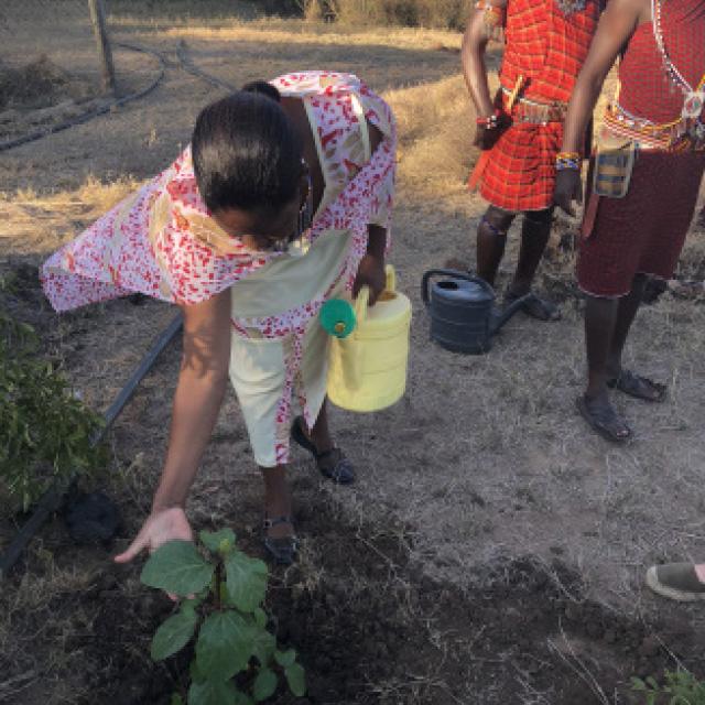 kjop-et-tre-plant-et-tre-masai-kvinner.jpg