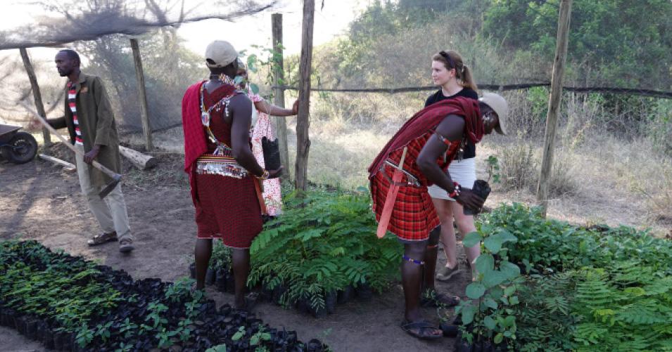 treplanting-floriss-masai-mara.jpg