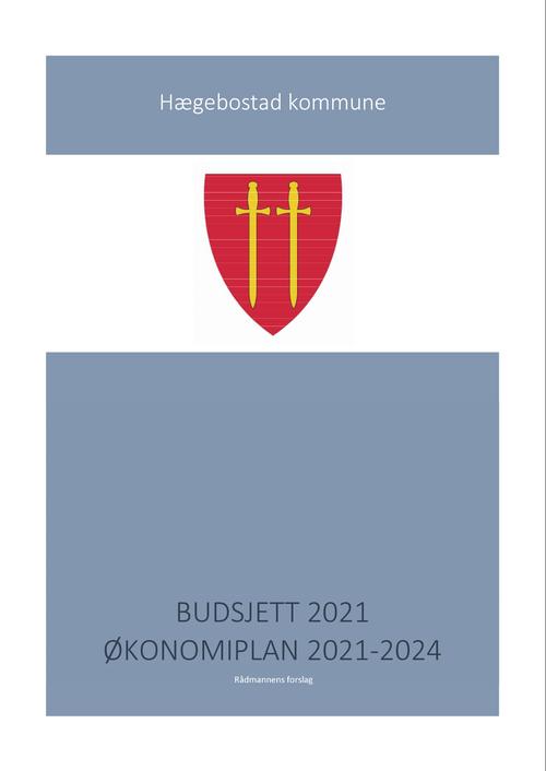 Budsjett 2021[2]