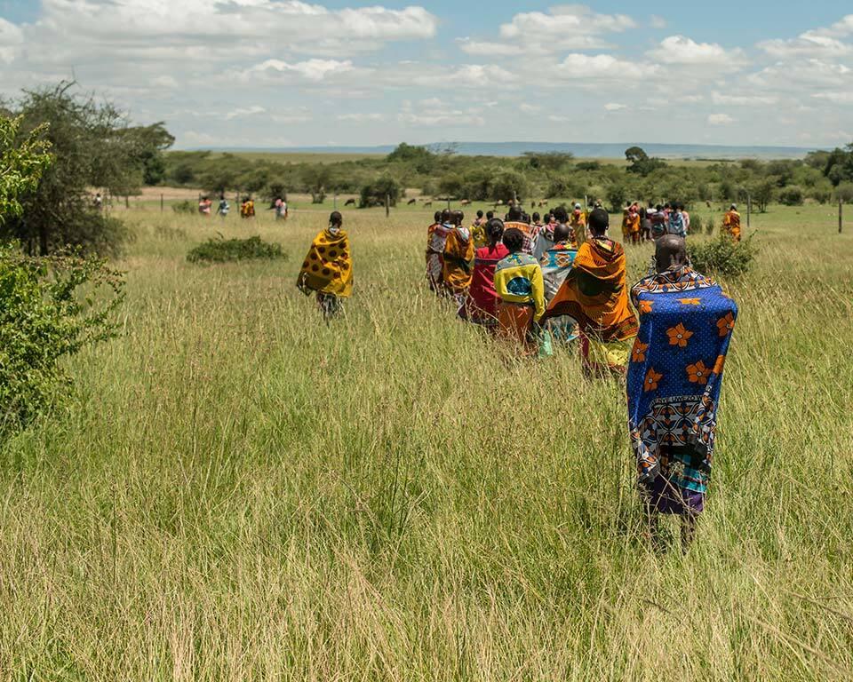 treplanting-i-kenya-masaikvinner-paa-savannen.jpg