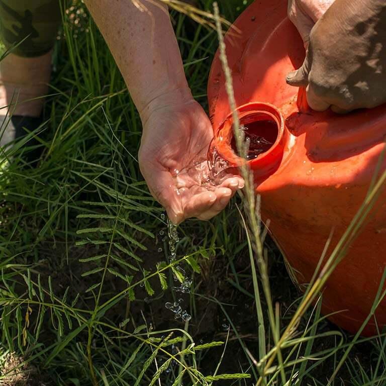 treplanting-i-kenya-vann-fra-dunk-d.jpg