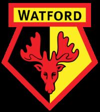 21 badge