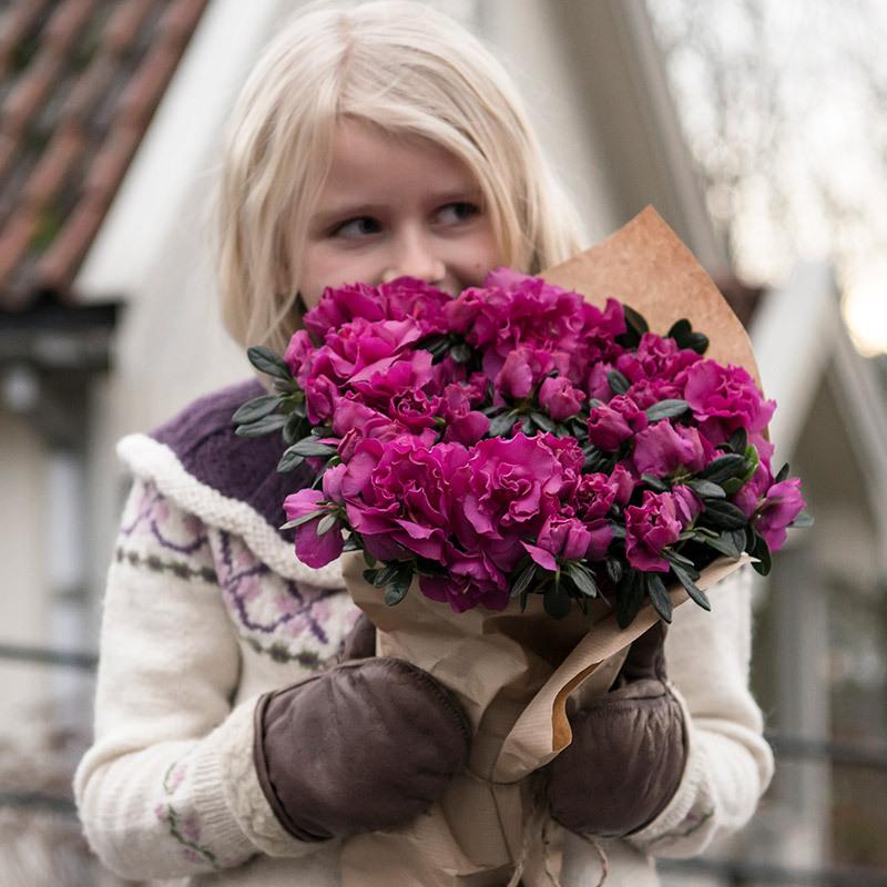 azalea-lyser-opp-i-vintermoerket-azalea-pernille-lukter-.jpg