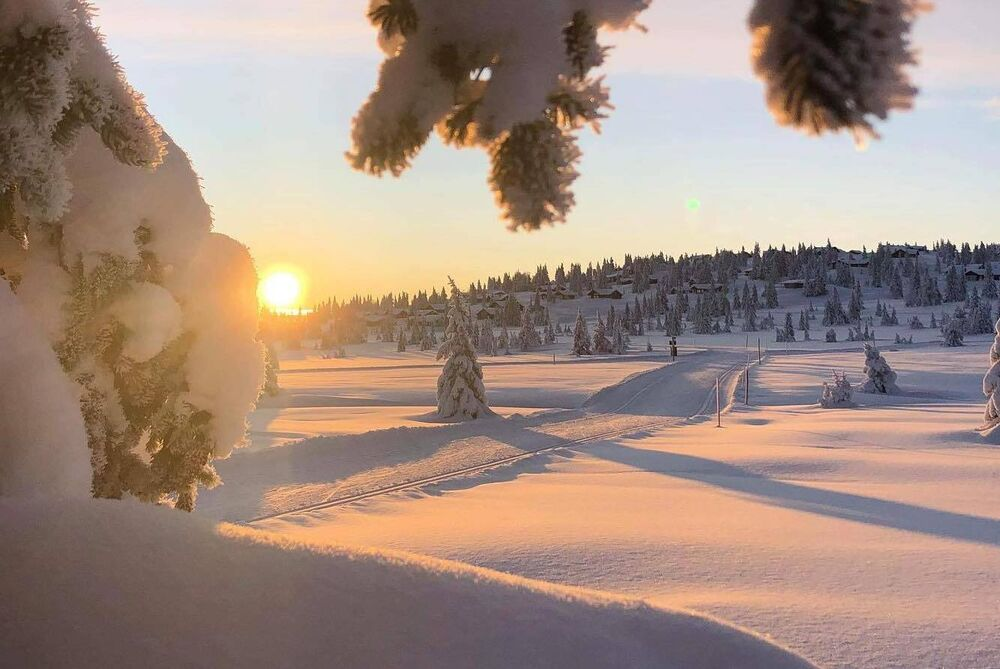 Photo : Sjusjoen