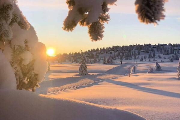 Photo : Sjusjoen