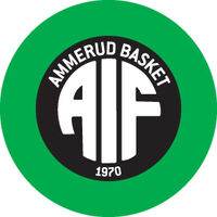 AIF_basketlogo ny copy