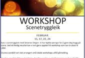 Workshop Scenetryggleik