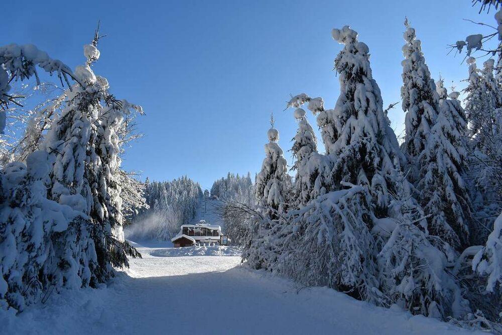 Photo : Vosges Tourisme