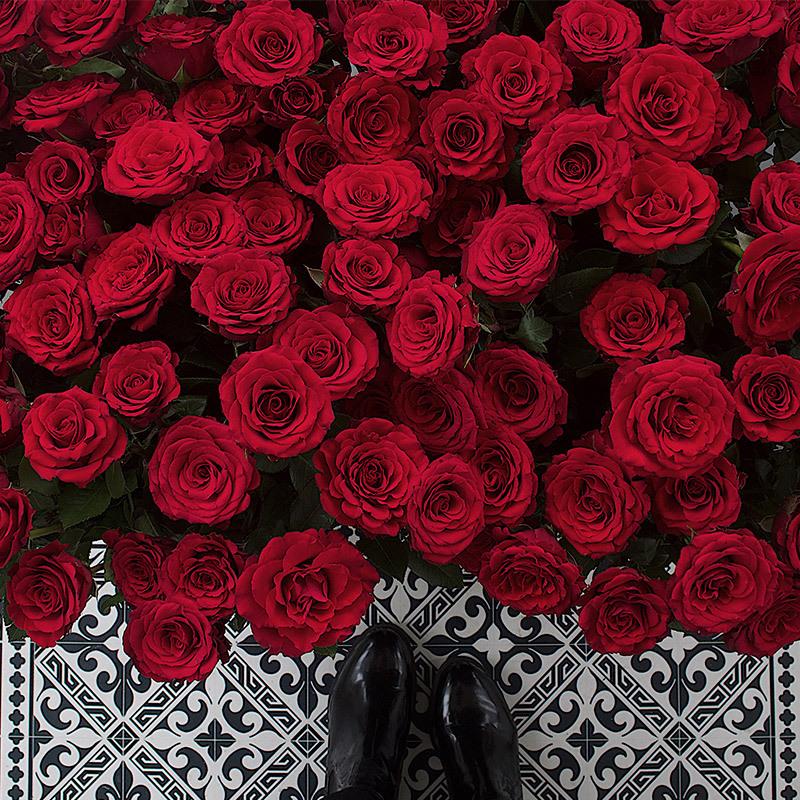floriss-valentine-roede-roser.jpg