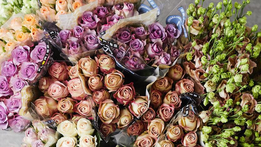 Roser i alle farger og fasonger