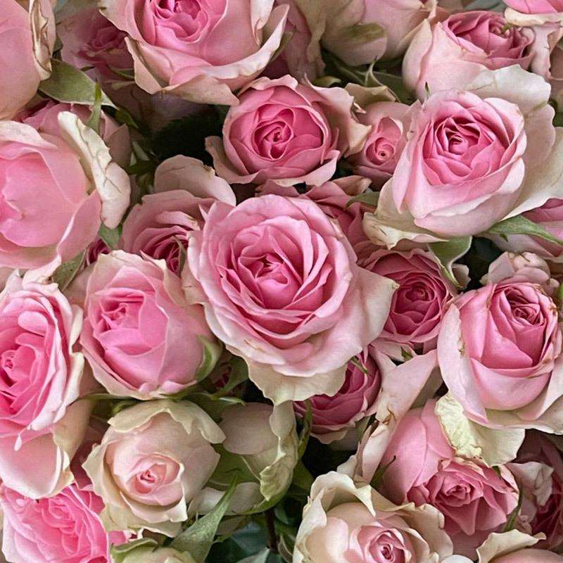 roser-i-alle-farger-og-fasonger-dinara.jpg
