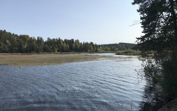 Slorene våtmarksområde sett mot sør