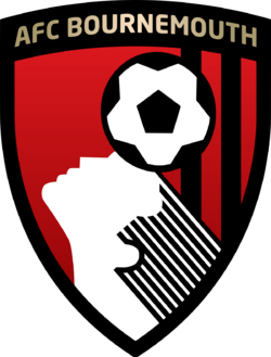 20 bournemouth badge