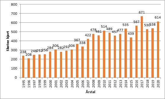 hjort - skote pr år - 2020.png