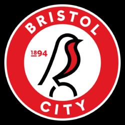 6 Bristol badge