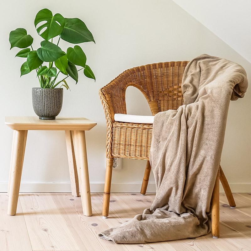 groenne-planter-monstera-vindusblad-1.jpg