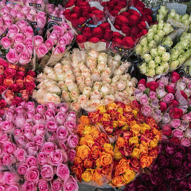 roser-rosekort-kundeklubb-floriss-3.jpg