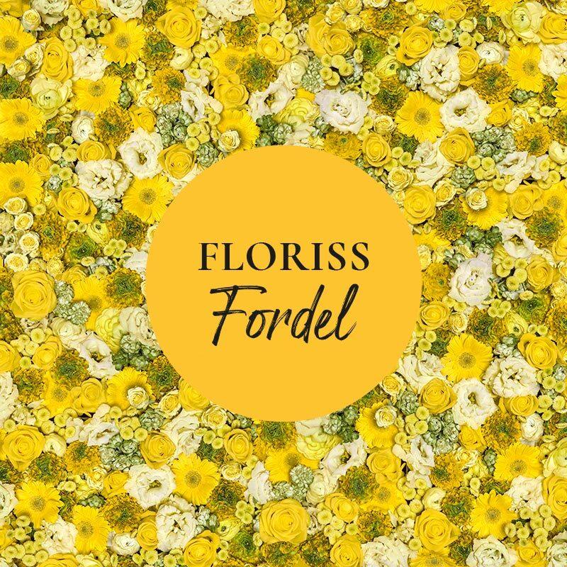 floriss-fordel-gule-og-hvite-blomster-med-emblem.jpg