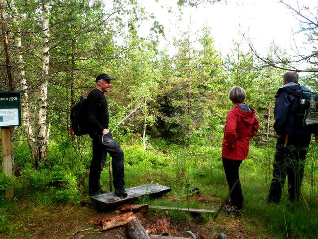 Turstien Hafslo-Årøy