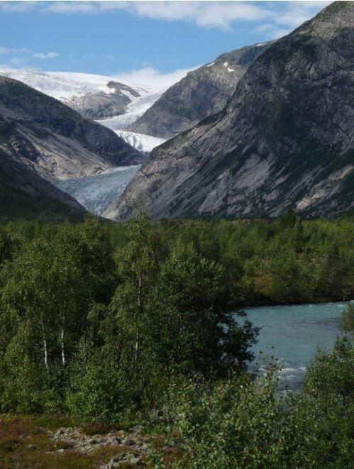 Nigardsbreen naturreservat