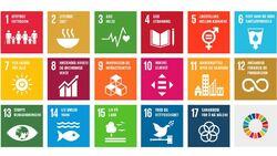 FN bærekraft norsk