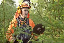 Skogfond kan blant annet brukes til å dekke skogeiers egenarbeid i skogen Foto: Statsforvalteren i Oslo og Viken.