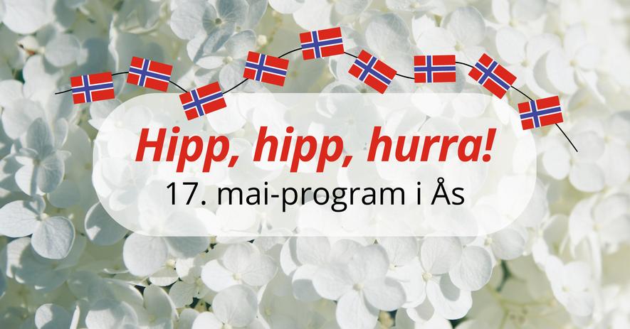Illustrasjon med 17. mai flagg og hipp, hipp hurra!