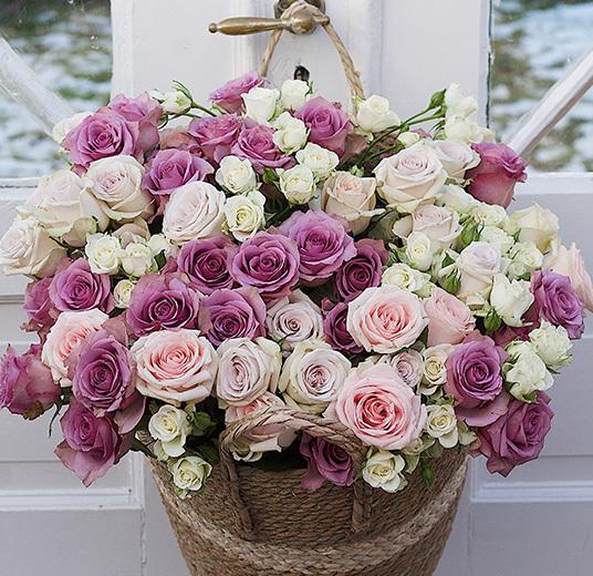 pastellfarget-rosedroem-4-floriss.jpg