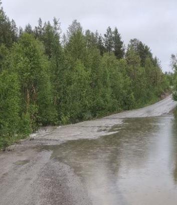 Svartfossveien