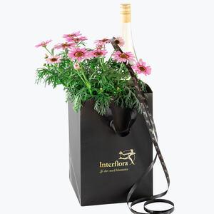210314_blomster_plante