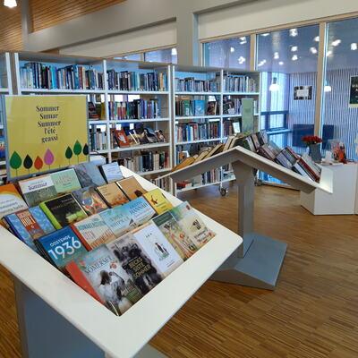 Bilde av Gran biblioteks bokutstilling i inngangspartiet på hovedbiblioteket.