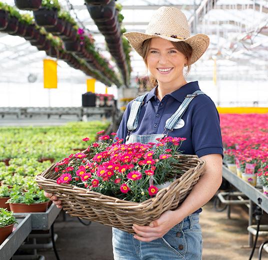blomster-dyrket-i-norge-gartneri-blid-dame-med-kurv-roede-blomster.jpg